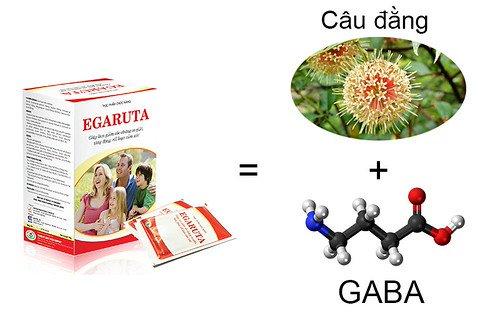 Sản phẩm chứa GABA giúp hỗ trợ điều trị chứng động kinh và tăng động